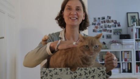 Nachbarn #2: lucyredcat